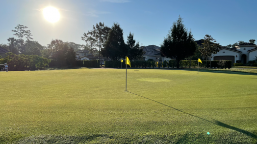 read the putting green